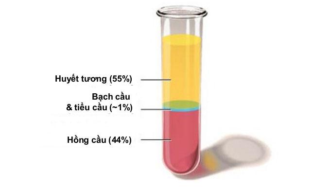 Ưu, nhược điểm của phương pháp tách huyết tương trong điều trị nhược cơ 1